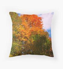 Painter's Brush of Red Throw Pillow