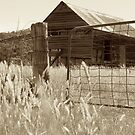 Outback Barn by Prismatique