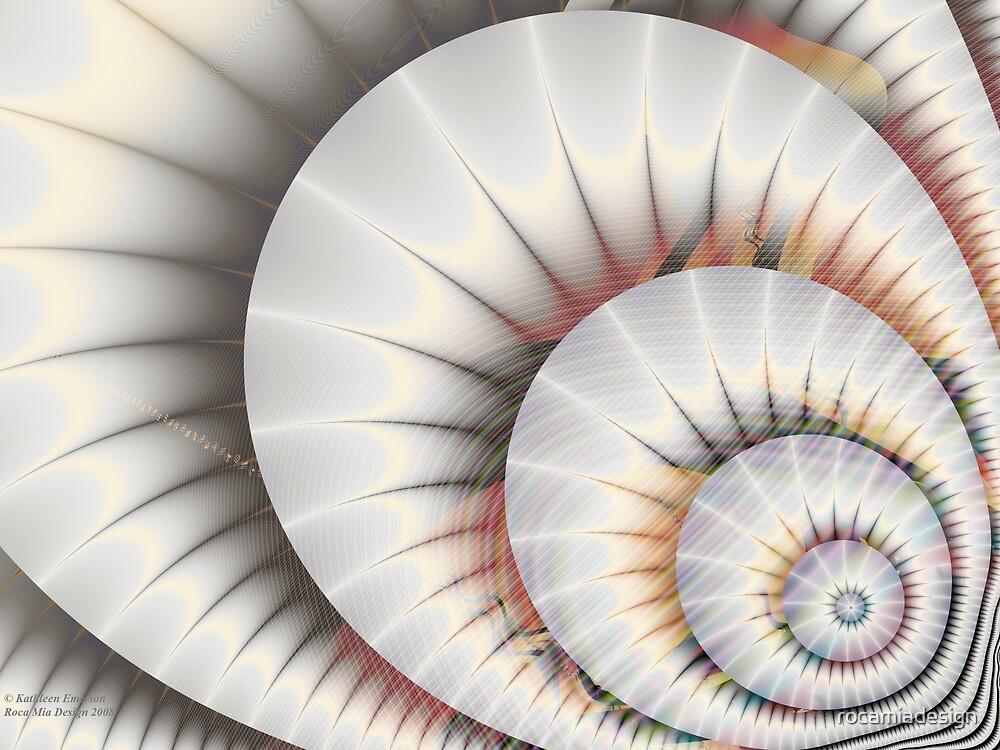 Seashell by rocamiadesign