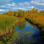 Omands Creek by Larry Trupp