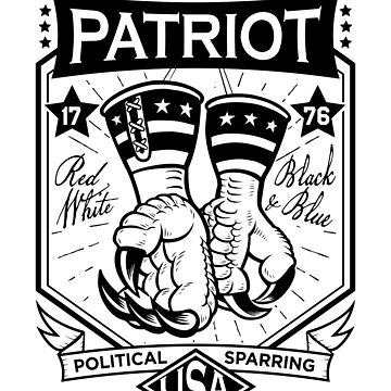 Political Sparring Eagle Mitts USA by bsanczel