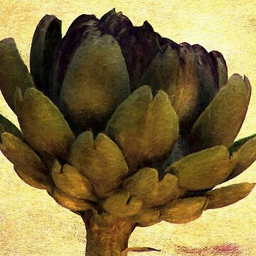 ARTICHOKE by Margi