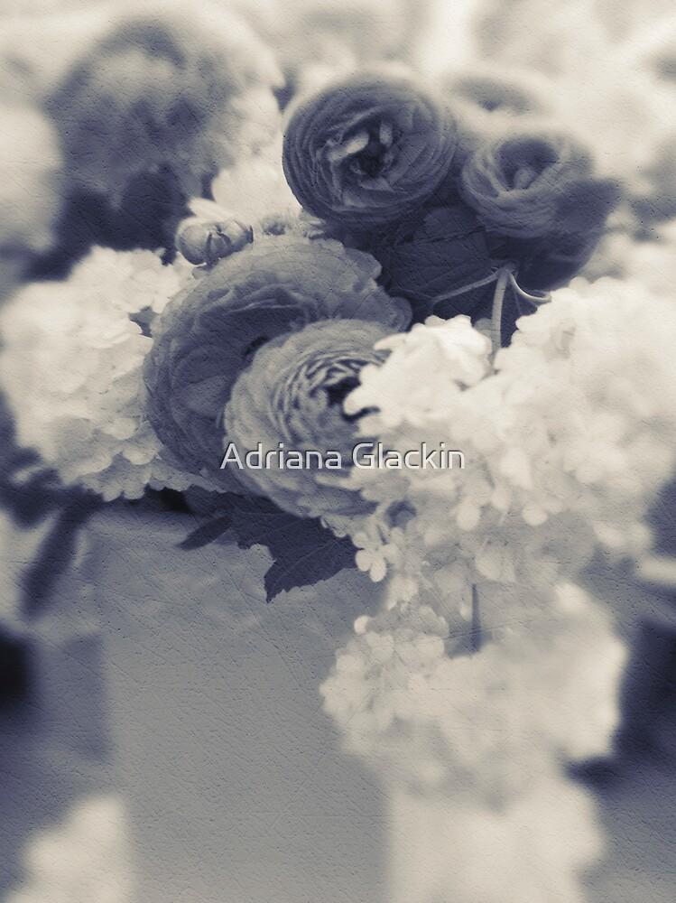 ~ still life ~ by Adriana Glackin
