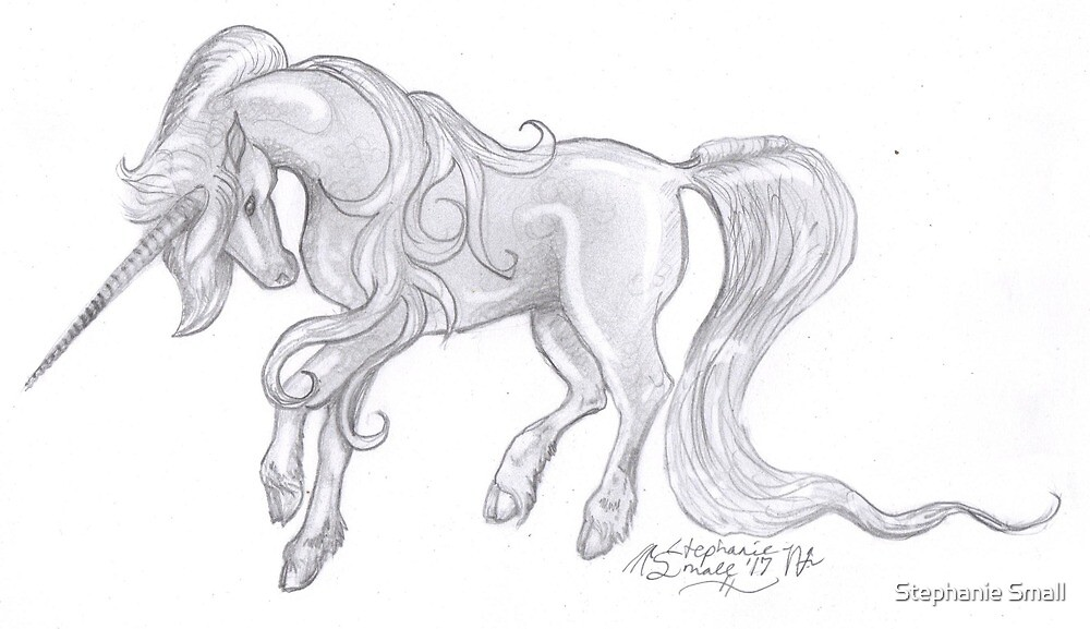 Horse star pony equine equestrian equus equine horses unicorn by Stephanie Small