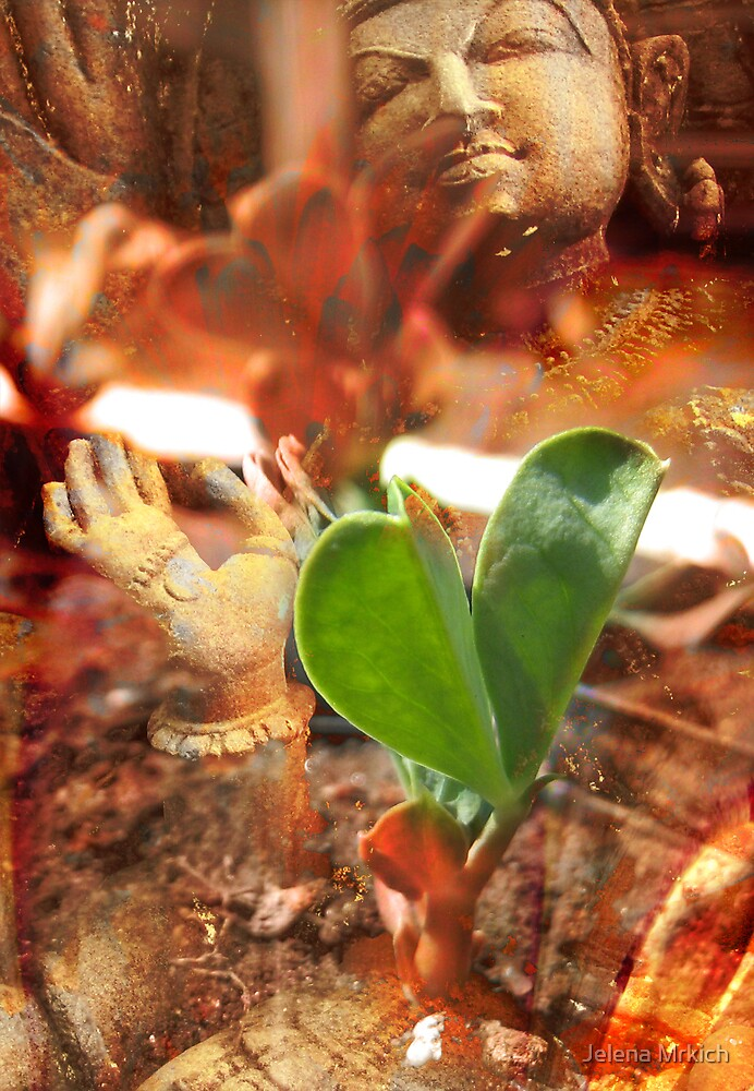 Birth of the Organic Heart ii by Jelena Mrkich