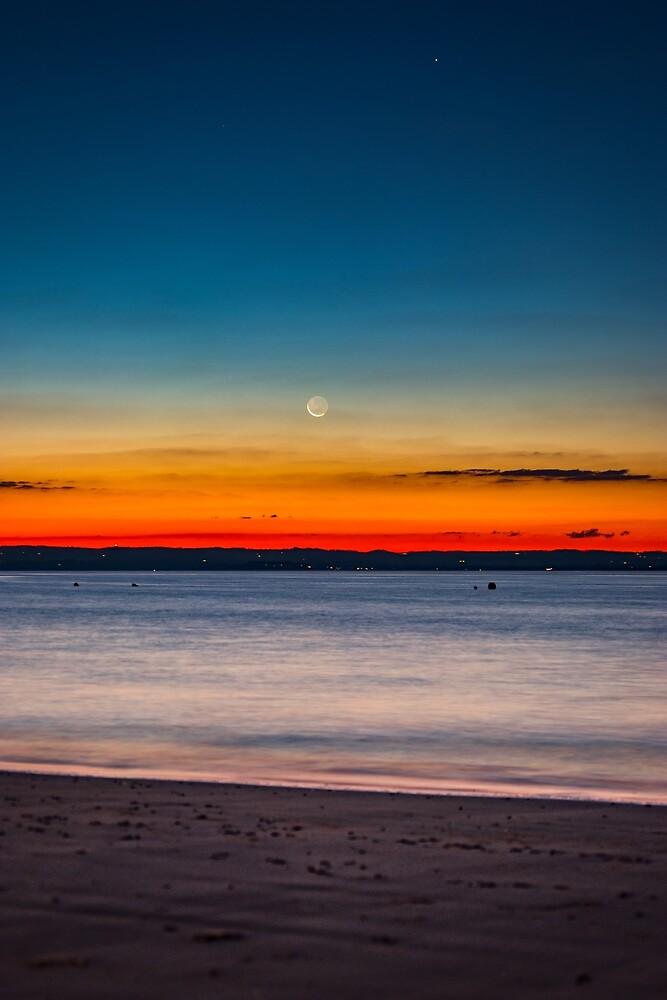Twilight New Moon by Aiin Ojani