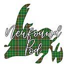 NewfoundPod - A Bite Sized Podcast About Newfoundland by newfoundpod