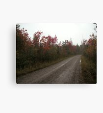 Road too Oblivion Canvas Print