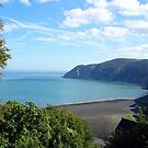 Die Bucht bei Lynmouth, Devon, England von trish725