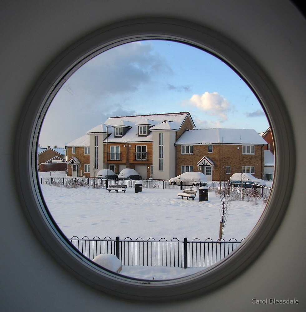 Through the Round Window by Carol Bleasdale