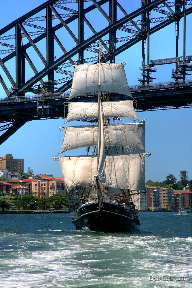 Tall Ship in Sydney Harbour by Bob Culshaw