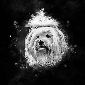 gxp hairy havanese dog splatter watercolor black white by gxp-design