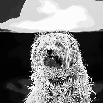 gxp hairy havanese dog vector art black white by gxp-design