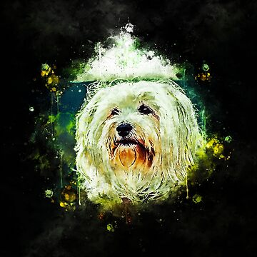 gxp hairy havanese dog splatter watercolor by gxp-design