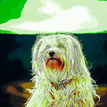 gxp hairy havanese dog vector art by gxp-design