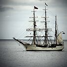 French tall ship, Irelnd by Monica Di Carlo