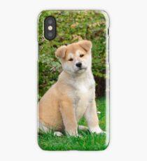Akita puppy iPhone Case