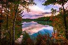 Pink Lake by Yannik Hay