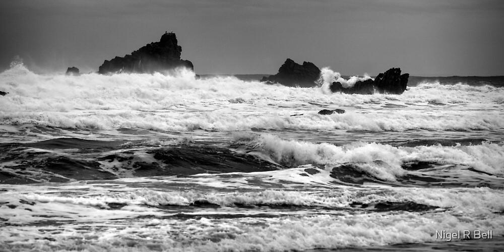 Sea Stacks by Nigel R Bell