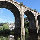Knaresborough Viaduct by CreativeEm