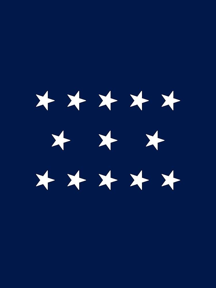 13-Star American Flag, 5–3–5 Design, Evry Heart Beats True by EvryHeart