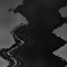 Crow Skin #19 by Diogo Cardoso