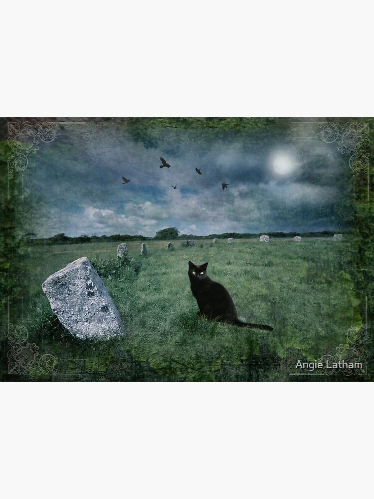 Cornish Black Cat by AngelaBarnett