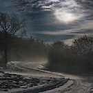 snow storm by dagmar luhring