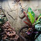 Garden Leopard by Maureen Kay