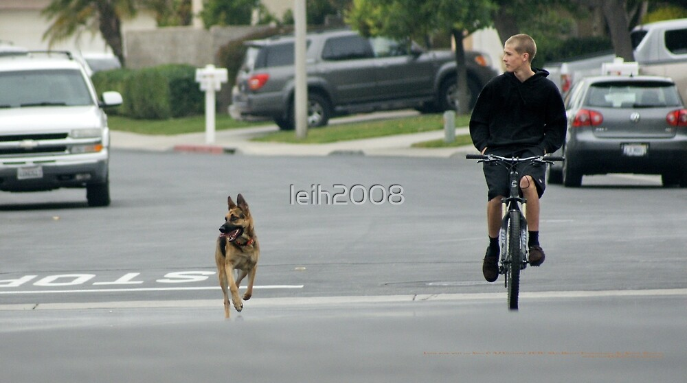 Look both ways ... (My Son with his dog in training Dec. 2010 La Mirada, CA USA)   by leih2008