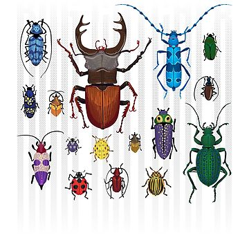 Entomology - Bug Lovers Collection Bugs Insect T shirt by drlayson