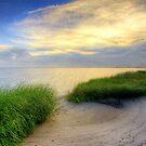 Grassy Beach Sunset by Jonicool