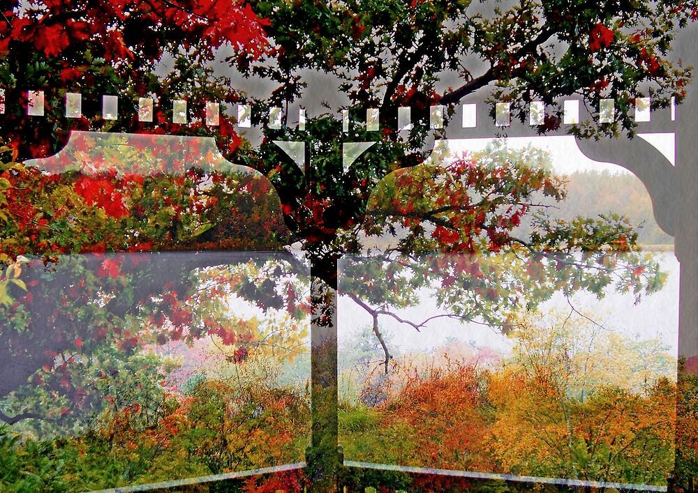Rainy Fall Day   from The Gazebo  by fiat777