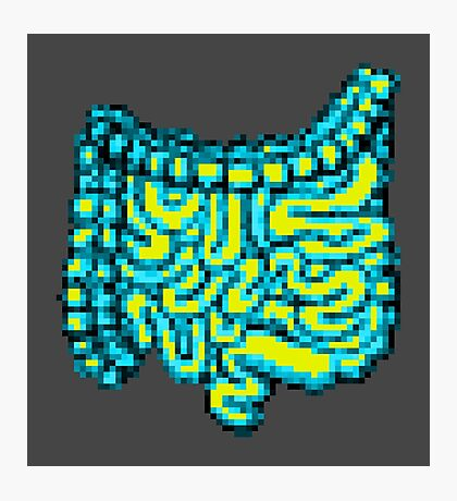 8-bit Intestines Photographic Print