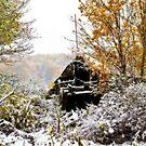 October Snow by BigD