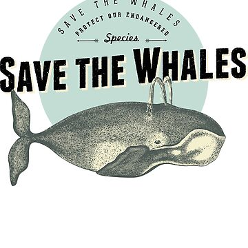Save the Whales  by augenpulver