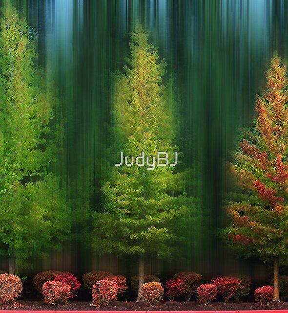 Fall by JudyBJ