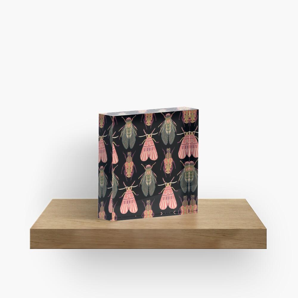 Beautiful Bugs Acrylic Block