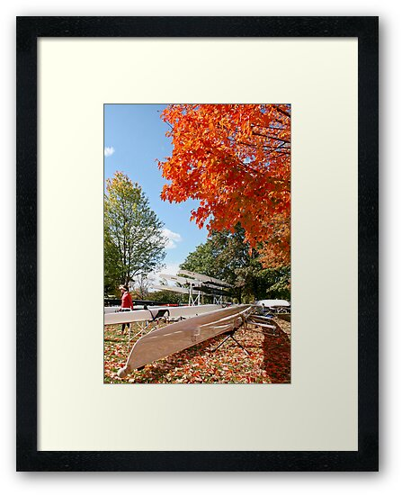 The colours of Fall by Jeanne Horak-Druiff