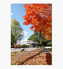 The colours of Fall Photographic Print