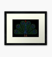 The Other Guys Peacock Framed Print