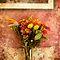 Still Life Floral Arrangements ❤️ No Clothing!