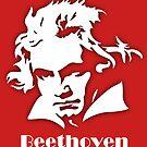 Ludwig van Beethoven von Bach4you
