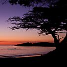 Sunset in Carmel-by-the-Sea  by Barb White