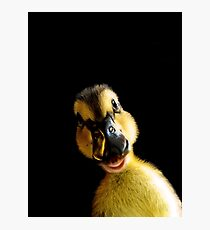Just Ducky! Photographic Print