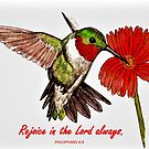 Humming Bird - With Philippians 4:4 Bible Verse by EuniceWilkie