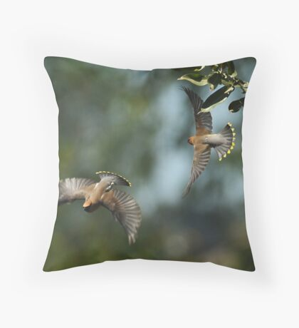 Two-Fer Throw Pillow