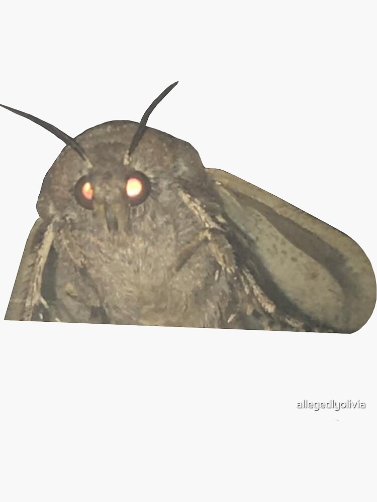 Motte Meme von allegedlyolivia