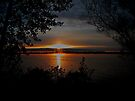 Sunrise On Manistee Lake by Shelly Harris