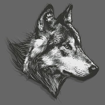 Animal Wolf Gray by Skullz23